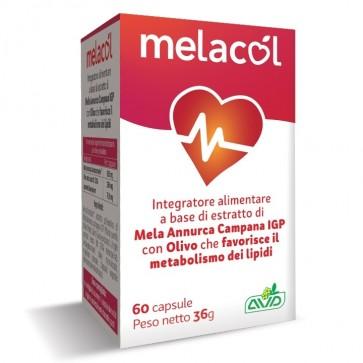 AVD Reform - Melacol