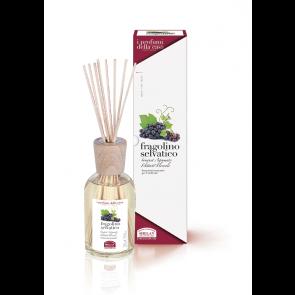 Helan I PROFUMI DELLA CASA - Bastoncini Aromatici - Fragolino Selvatico 250 ml