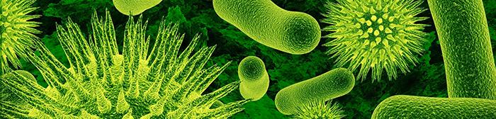 Guerra ai microbi